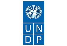 UNDP (United Nations Development Programme) (2015)